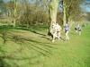 nicsac-06-picture011a