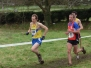 Irish inter Club XC 2008, Barnetts Park